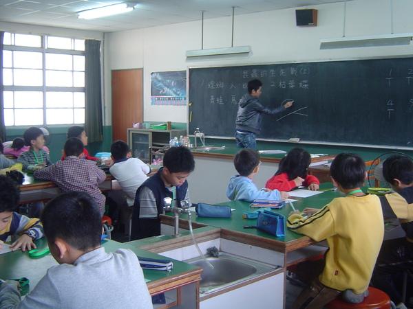 清江國小資優方案