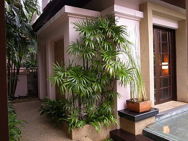 2011 Sep_Hotel_Banyan Tree_3