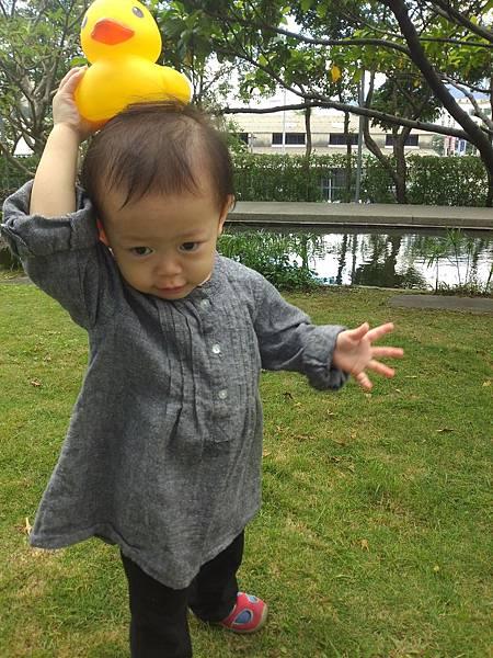 賞黃色小鴨_5
