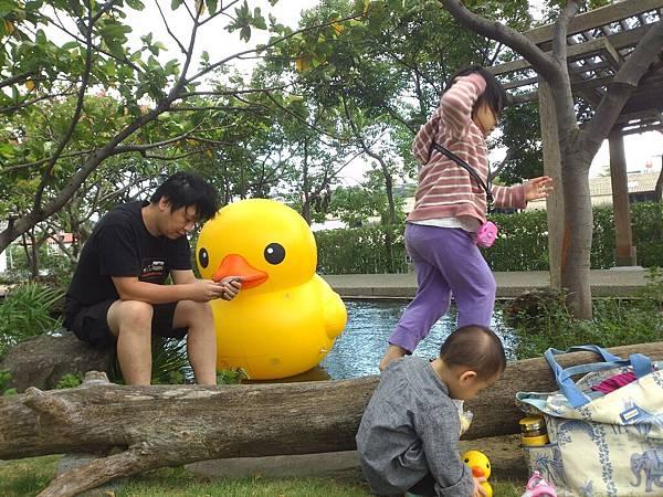 賞黃色小鴨_2