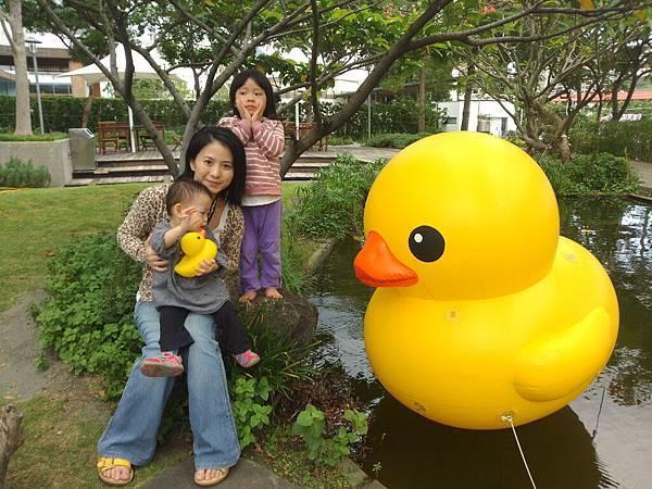 賞黃色小鴨_6