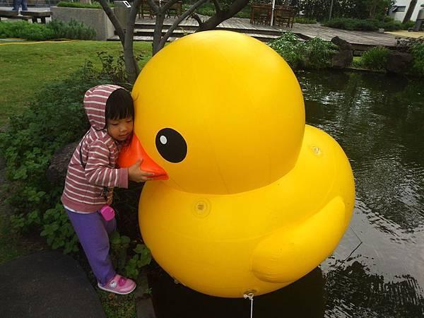 賞黃色小鴨_1
