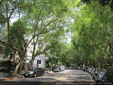 富錦街一景~左下方就是Woolloomooloo