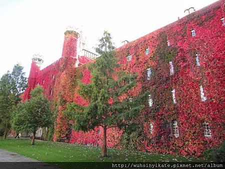 劍橋大學聖約翰學院(St John's College, Cambridge)
