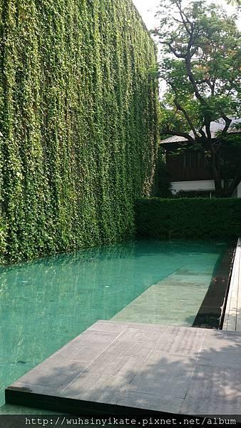 137 Pillars House 泳池!!
