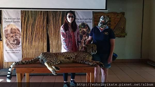 cheetah center
