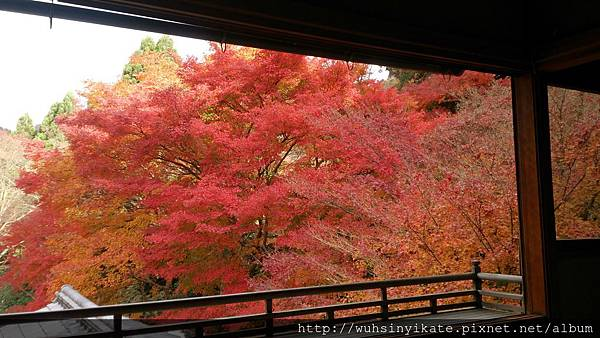 琉璃光院:二階上樓處窗口景觀