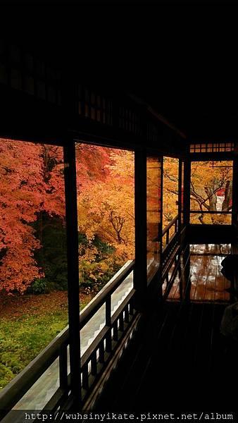 琉璃光院:二階窗口景觀