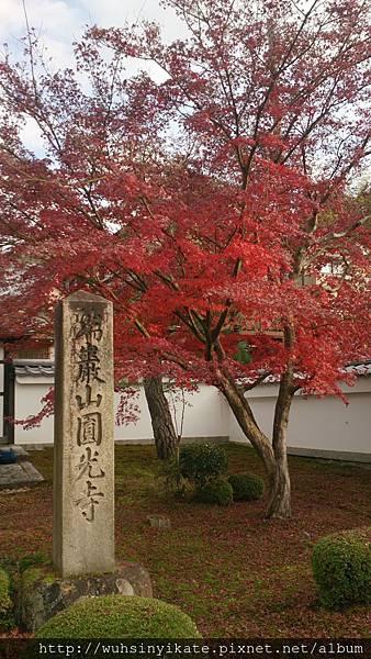 瑞嚴山 圓光寺