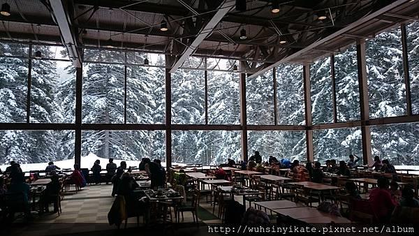 森林餐廳,度假村有許多餐廳可供選擇,這裡是我個人很喜歡的一間餐廳!