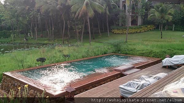 Four Seasons Resort Chiang Mai 泳池就在農田中間