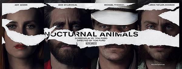 Nocturnal-Animals-BANNER