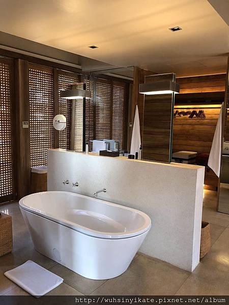 Garden Pool Suite 浴缸