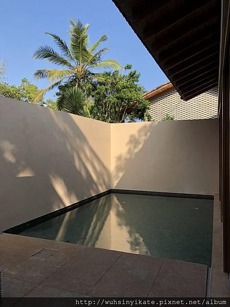 Garden Pool Suite 有一個私人小泳池