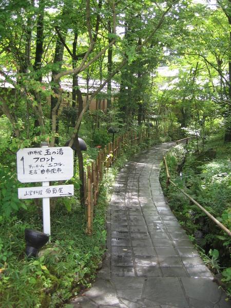 先經過一小片樹林庭園