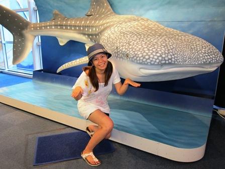 還沒看到鎮館之寶前,就已經假裝跟鯨鯊一起游,玩得很HIGH的某喵