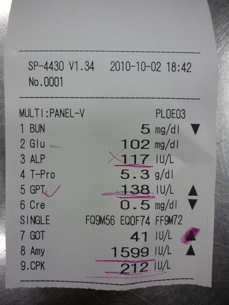 20101002血檢