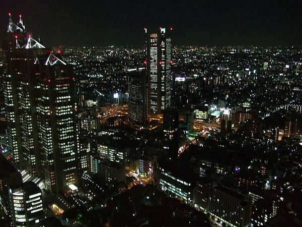 111Day1東京都廳夜景.jpg