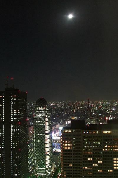 118Day1東京都廳夜景.jpg