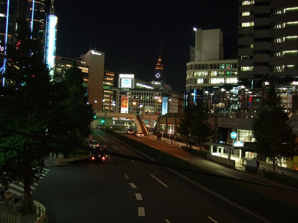 105Day1往東京都廳.jpg