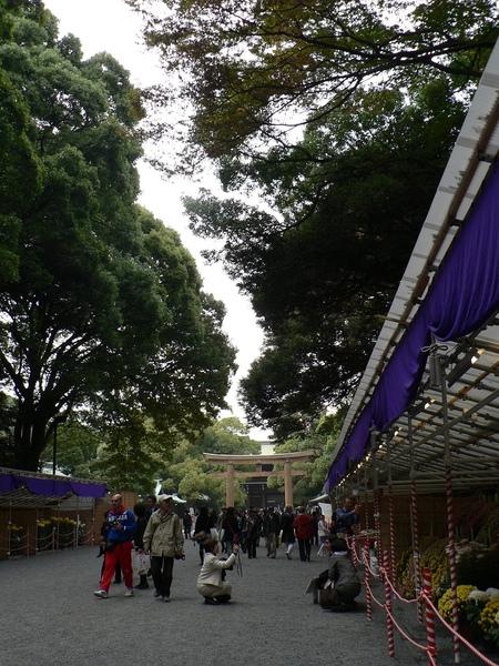 404Day3往明治神宮路上.jpg