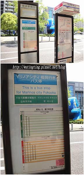 DSC00385_副本