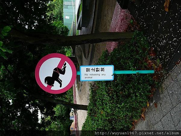 T4U十週年高雄茶會. (65).JPG