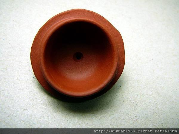 王定娟紅橄欖 (5)