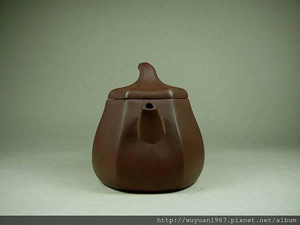 葛惠琴紫六角瓜 (2)