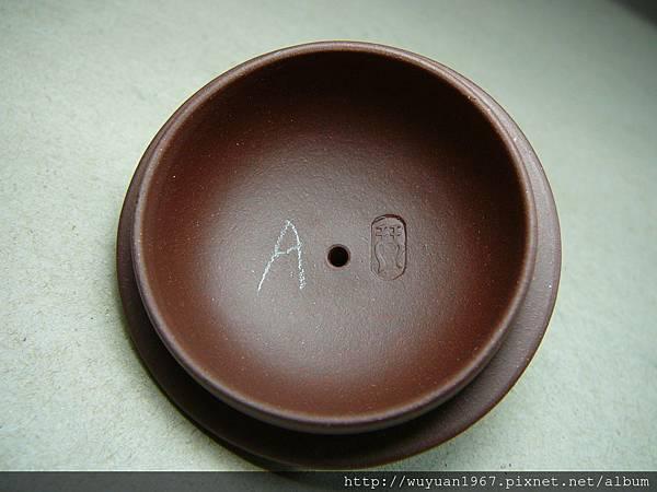 夏錫琴 紫 常青 圓章A (9)