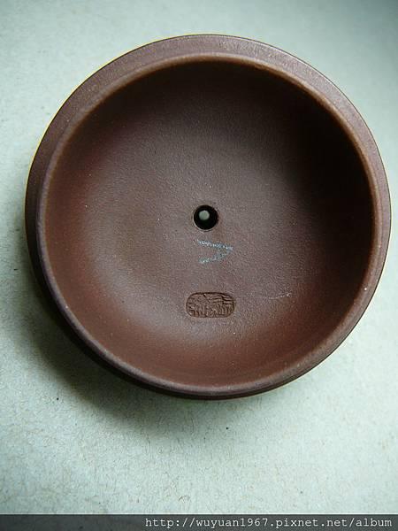 陸順娣 紫 葫蘆 (7)