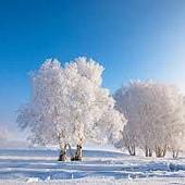 W36冬01.jpg