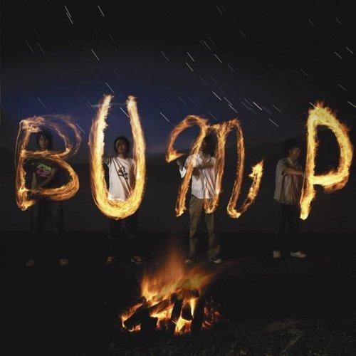 bumpofchicken