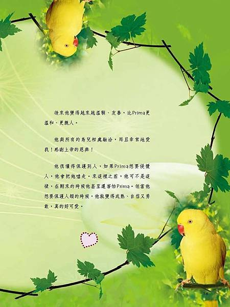 C-BIRDS-EB-S_頁面_015.jpg