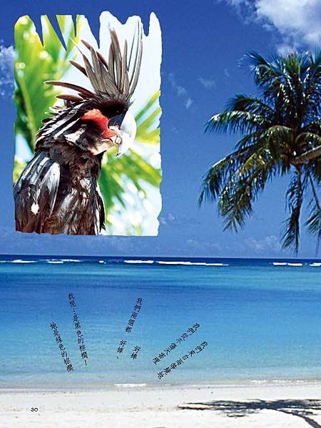 C-BIRDS-EB-S_頁面_030.jpg