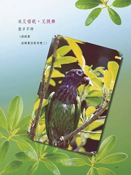 C-BIRDS-EB-S_頁面_067.jpg