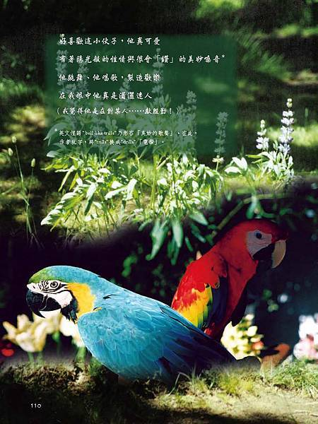 C-BIRDS-EB-S_頁面_110.jpg