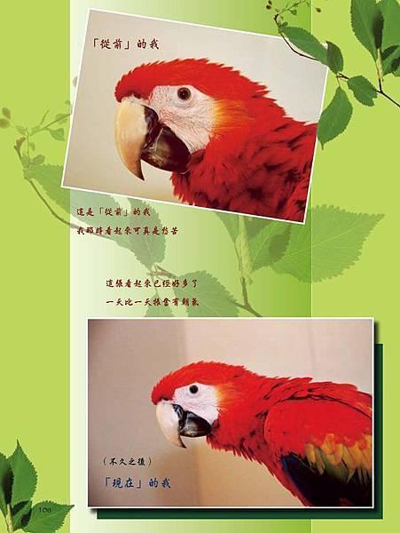 C-BIRDS-EB-S_頁面_106.jpg