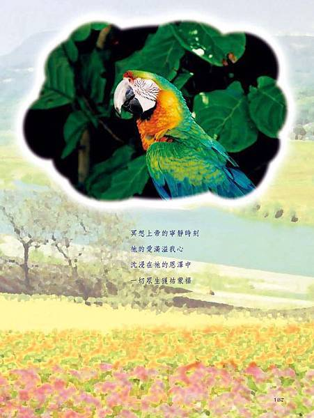 C-BIRDS-EB-S_頁面_137.jpg