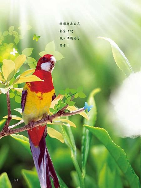 C-BIRDS-EB-S_頁面_146.jpg