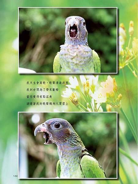 C-BIRDS-EB-S_頁面_152.jpg