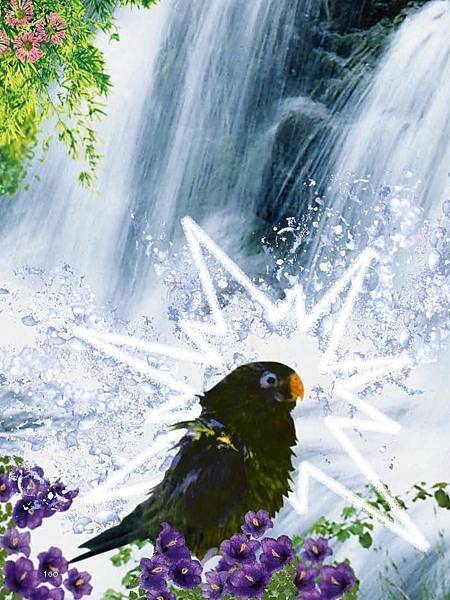 C-BIRDS-EB-S_頁面_160.jpg