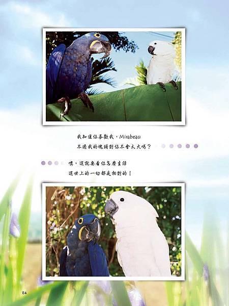 C-BIRDS-EB-S_頁面_172.jpg