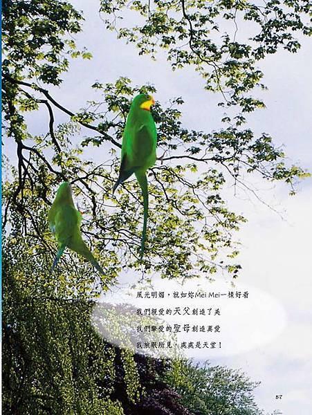 C-BIRDS-EB-S_頁面_205.jpg