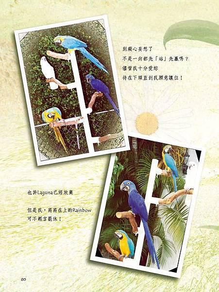 C-BIRDS-EB-S_頁面_228.jpg