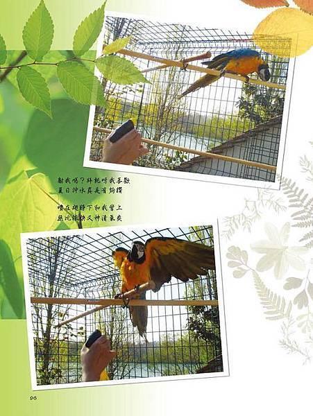 C-BIRDS-EB-S_頁面_244.jpg