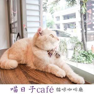 喵日子café.jpg