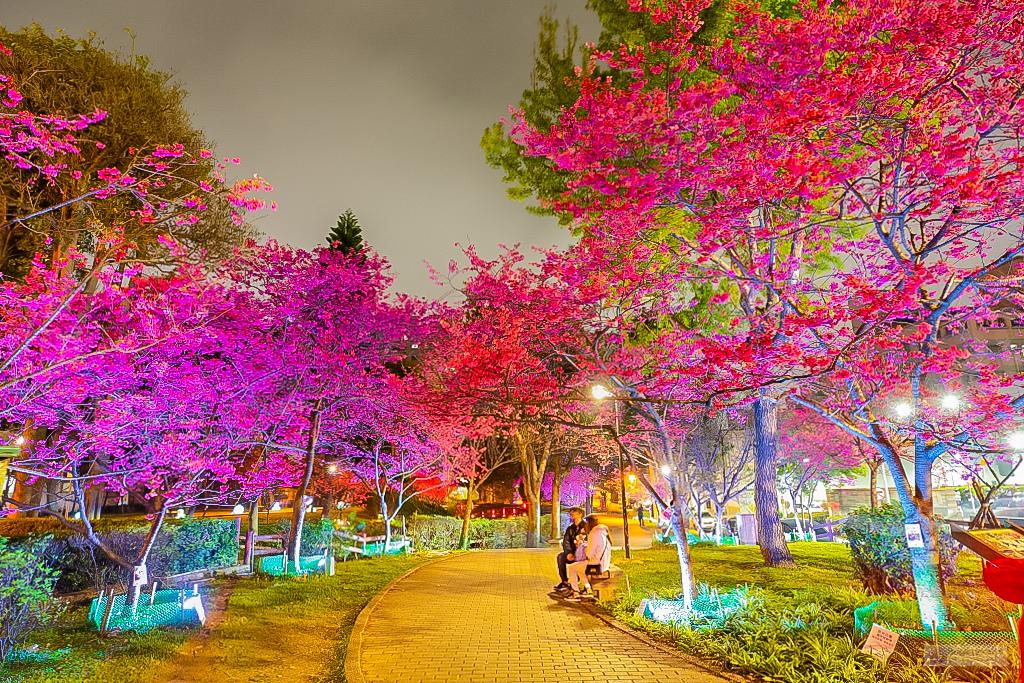 8346_夜櫻_莒光公園.jpg