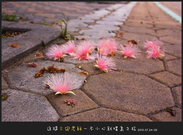 Lanyu_D1_007.jpg