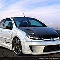 peugeot-206-widebodykit.jpg